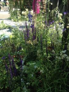 Docteur Hauschka, Jardins, jardin © De fil en archive